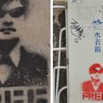 Chen Guangcheng FREE