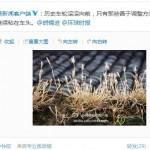 NetEase calls out Hu Xijin of the Global Times