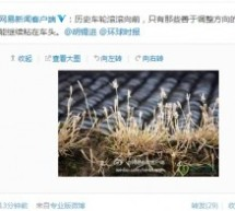 NetEase Compares Global Times Chief Editor Hu Xijin To Grass That Rolls With The Prevailing Political Winds