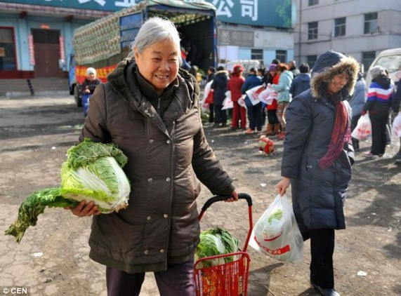Daily Mail Taiyuan cabbage 3