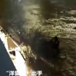Watch: Swedish Man Saves Drowning Woman In Chengdu