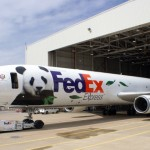 Giant Pandas Er Shun And Da Mao Are Being Flown From Chengdu To Canada Today Via FedEx