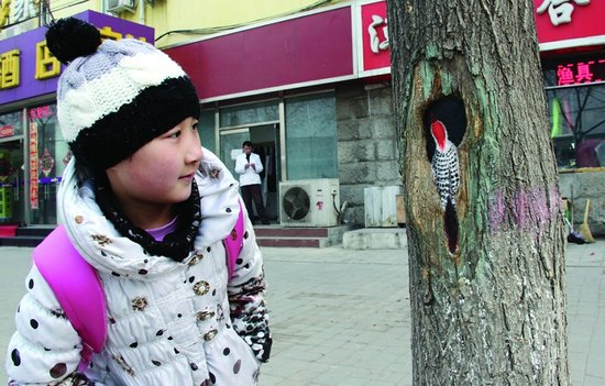 Hollow tree paintings in Beijing 3