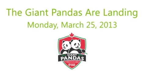 Pandas are arriving Toronto Zoo