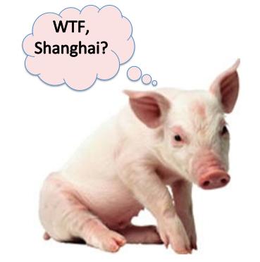 Pig asks WTF