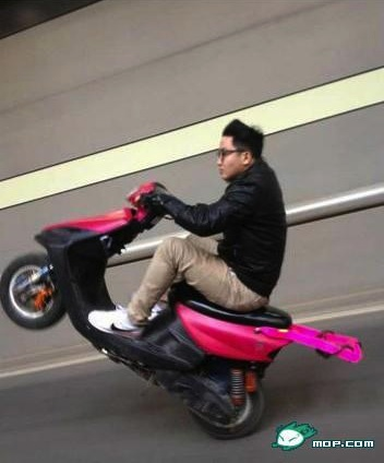 Wheely on pink scooter 1