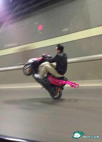 Wheely on pink scooter 2