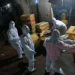 Bird flu roundup: 6 dead, Shanghai poultry market closes, large chicken cull, plus first reported case in Hong Kong