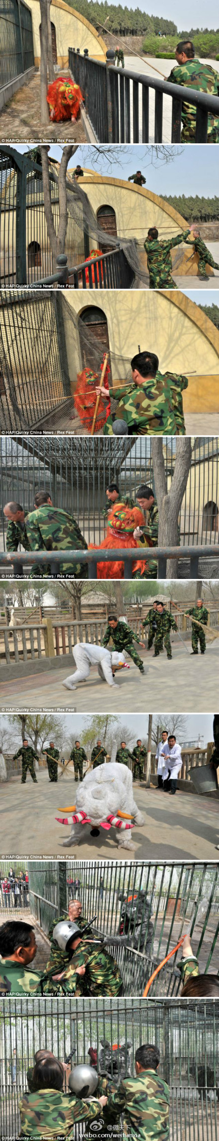 Taiyuan Zoo exercise with humans in animal costumes.jpg
