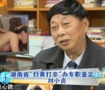 Senior Chinese Pornography Censor Watches A Lot Of Porn, Hates It
