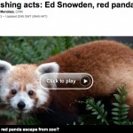 Edward Snowden and red panda