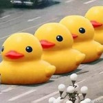 Tiananmen Duck Man