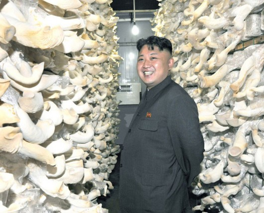 Kim Jong-un loves mushrooms 1