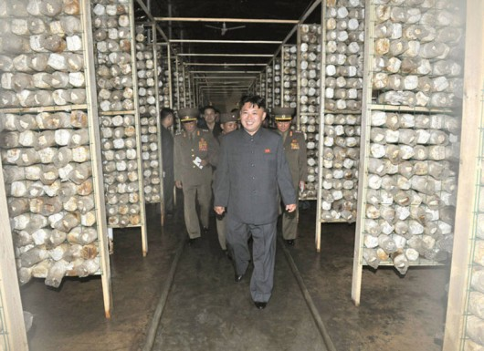 Kim Jong-un loves mushrooms 2