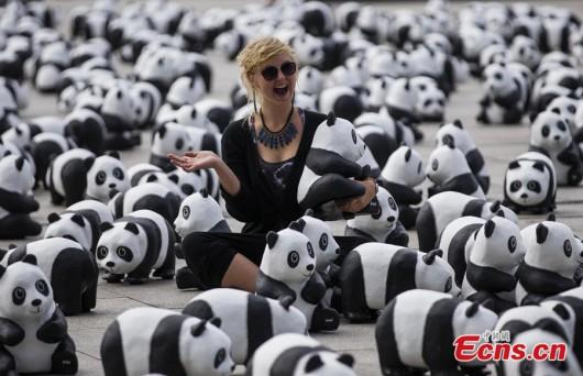 Pandas in Berlin 1