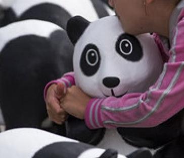 Pandas in Berlin 2