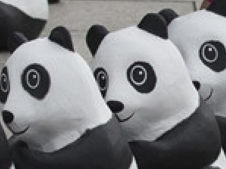 Pandas in Berlin 2b