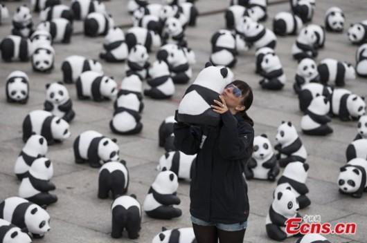 Pandas in Berlin 3