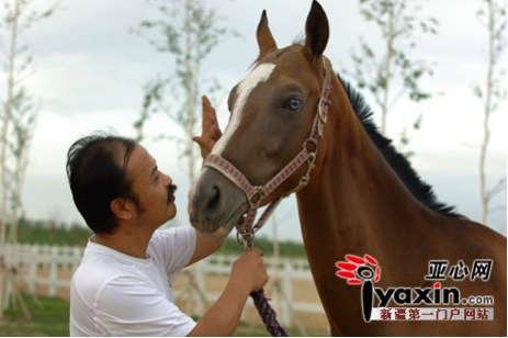Chen Zhifeng and His Million-Dollar Horses 1