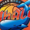 The CBA Has A New Team, The Sichuan Blue Whales