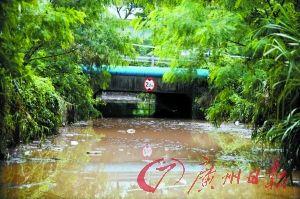 Woman drowns in car in Shenzhen