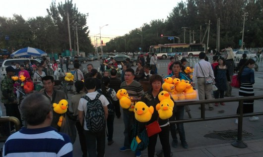 Rubber duck in Beijing by Chris Clayman 5