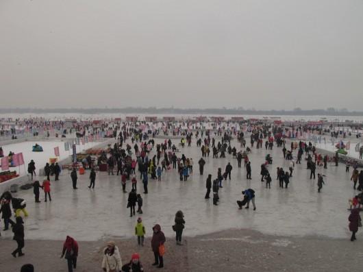 Harbin 14