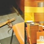 Hong Kong McDonald's 7-inch rat