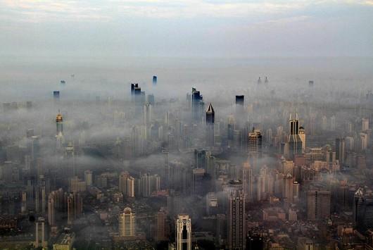 Wei Gensheng Shanghai crane pic 2