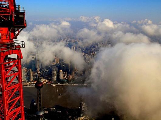 Wei Gensheng Shanghai crane pic 4