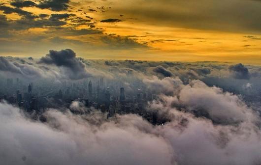 Wei Gensheng Shanghai crane pic 5