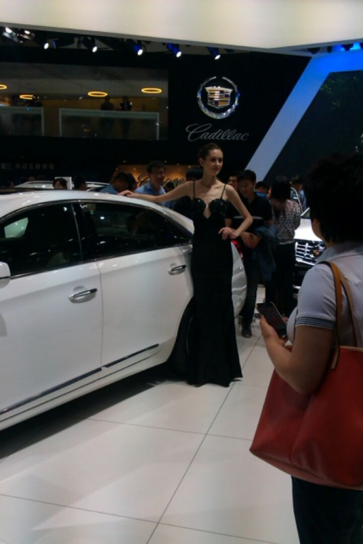 Beijing Auto Show 6