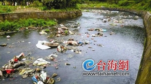 Dead pigs in Liuxi River