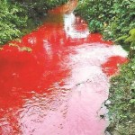 Chinese River Runs Red