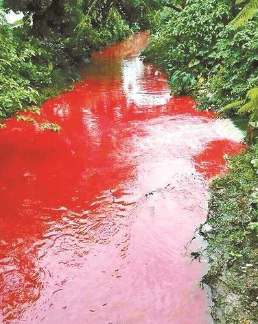 The River Runs Red 2