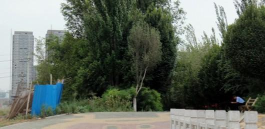 Buddha Xinjiang 6