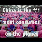 Sindicator, Ep.06: Food In China, Part 2 – The Meat Sweats