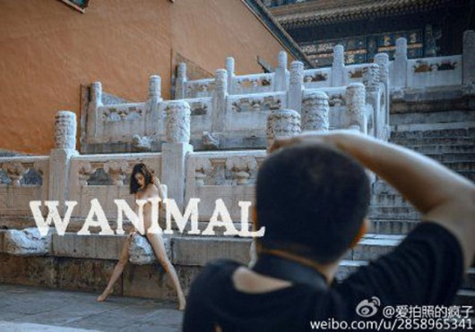 Forbidden City Wanimal shoot 3