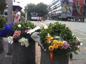 Flowers in Sanlitun
