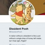@DissidentPooh Is The China Twitter Account Of Our Times